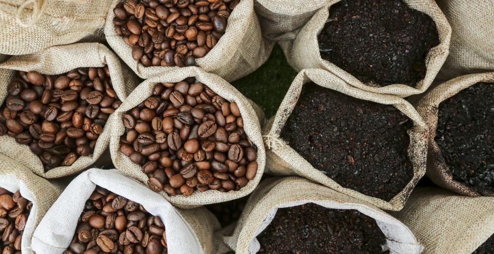 Mỹ tiếp tục là thị trường tiêu thụ số một cho cà phê của Brazil