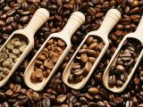 Brazil ghi nhận sự tăng trưởng trong xuất khẩu cafe nội địa