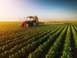 Mặt hàng nông sản của Mỹ