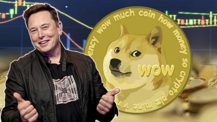 Đầu tư Dogecoin như thế nào mới được xem là đúng đắn?