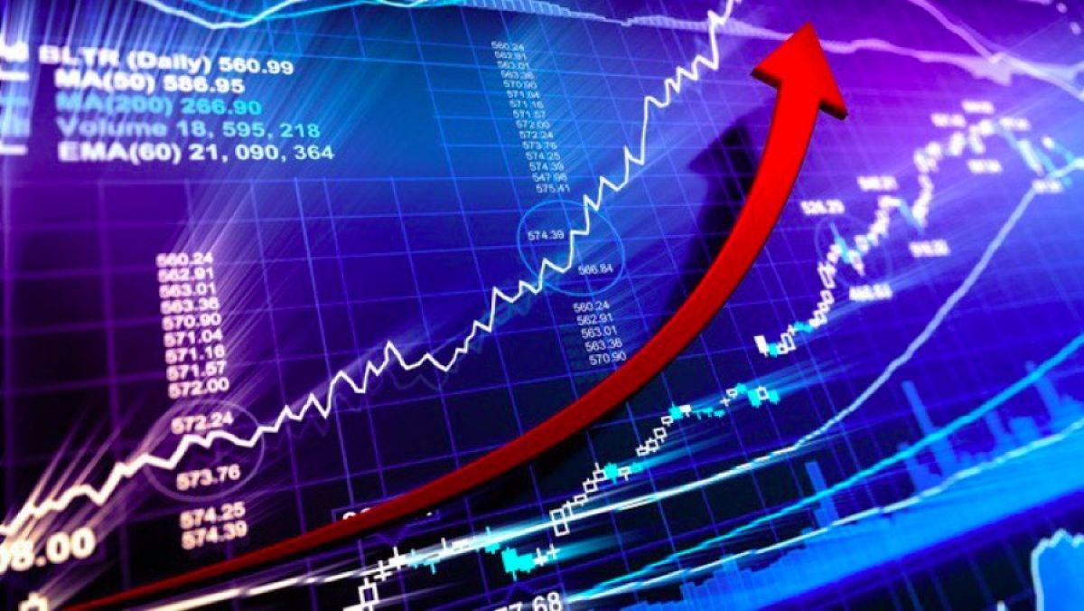 Giá cổ phiếu RIC tăng mạnh mặc cho cơ quan kiểm toán đang nghi ngờ khả năng hoạt động.