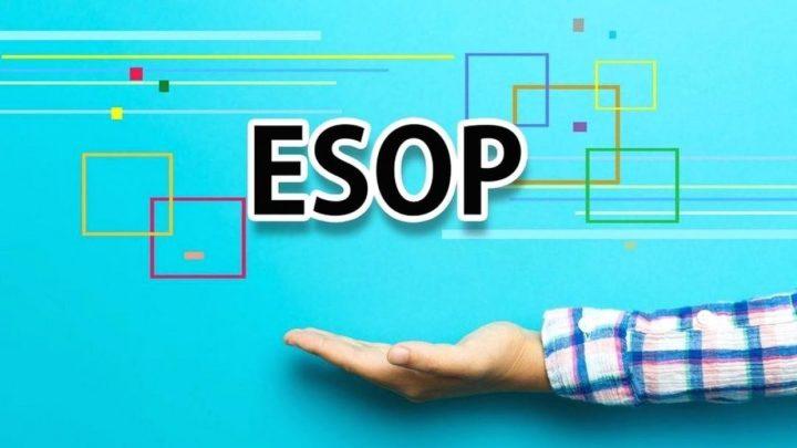 SFI quyết định phát hành cổ phiếu ESOP sau khi đạt được kết quả kinh doanh khả quan