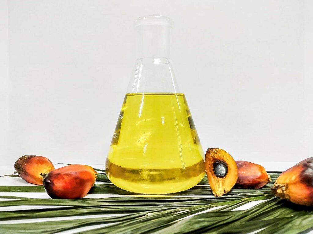 Tuy nhiên, như báo cáo cảnh báo, việc cấm sản xuất dầu cọ sẽ chỉ đẩy vấn đề hiện tại sang 1 vấn đề khác. Đó là đáp ứng nhu cầu tiêu thụ dầu cọ đang ngày càng tăng cao