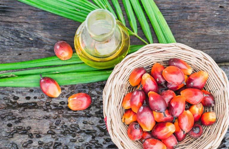Dầu cọ là một loại dầu thực vật được chiết xuất từ cùi của cây cọ dầu.